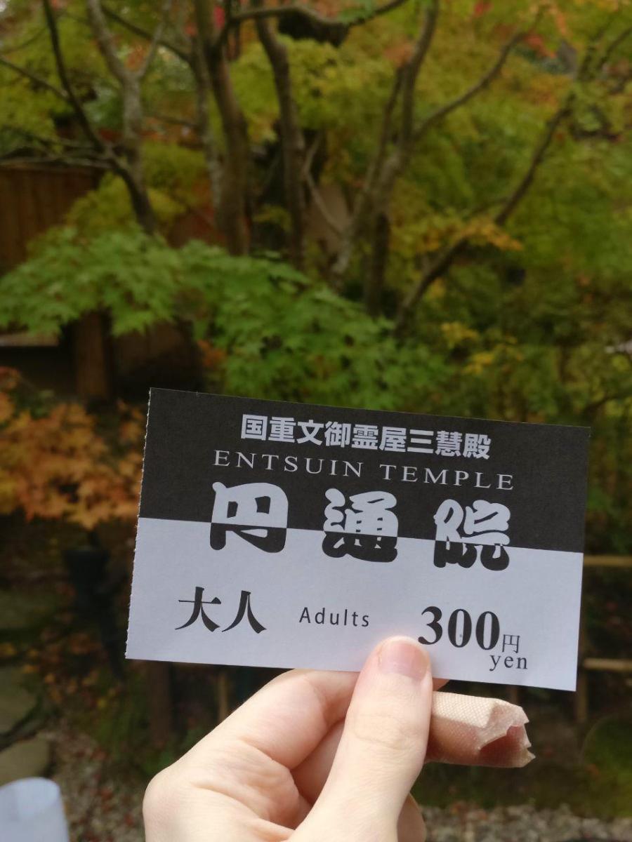 photo_2018-11-09_01-30-28