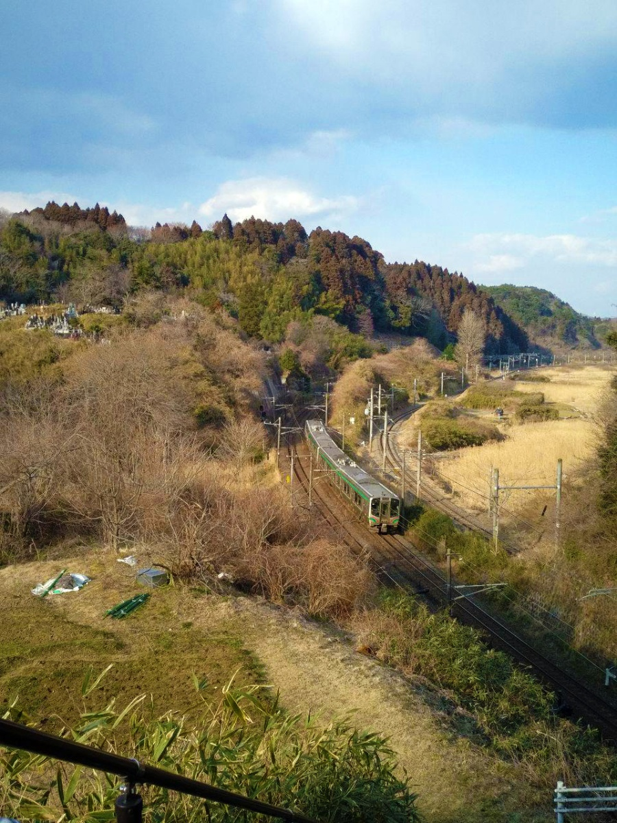 photo_2019-03-01_16-30-02.jpg
