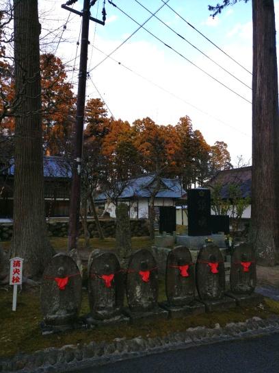 photo_2019-03-01_16-37-40