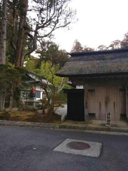 photo_2019-03-01_16-39-54