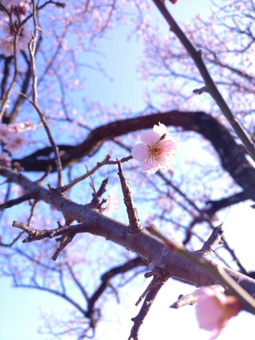 photo_2019-03-18_16-04-30