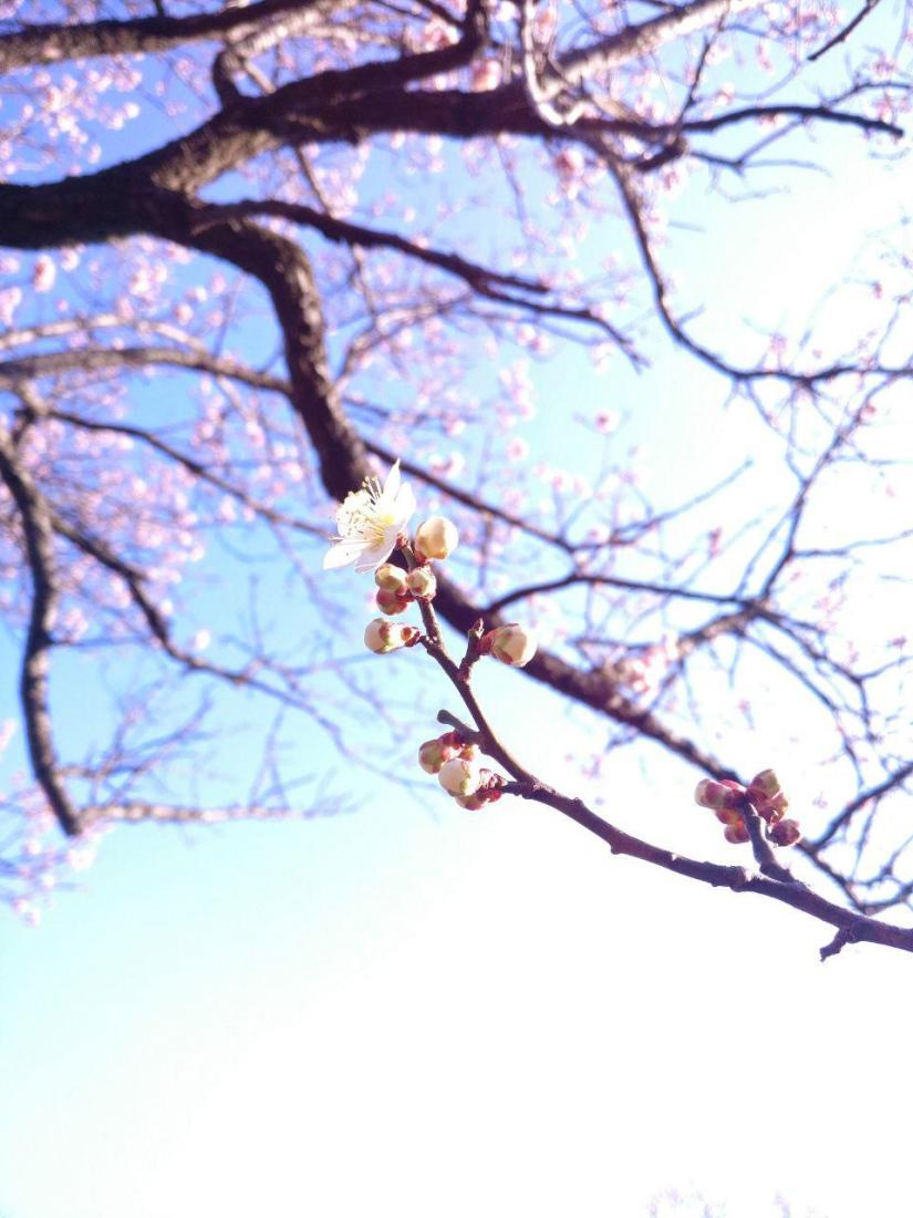 photo_2019-03-18_16-05-25