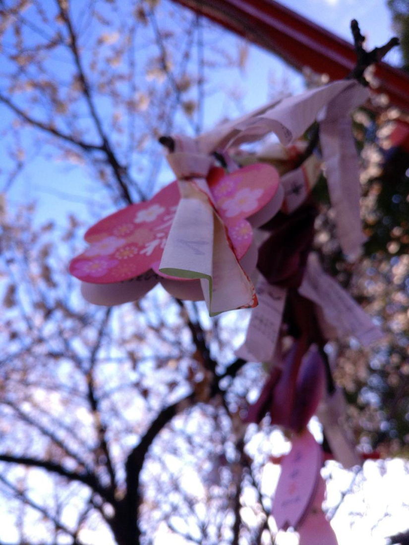 photo_2019-03-18_16-09-34.jpg