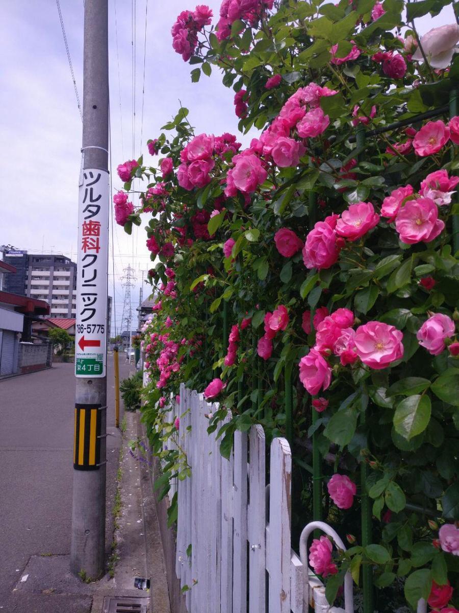photo_2019-07-16_16-34-05.jpg