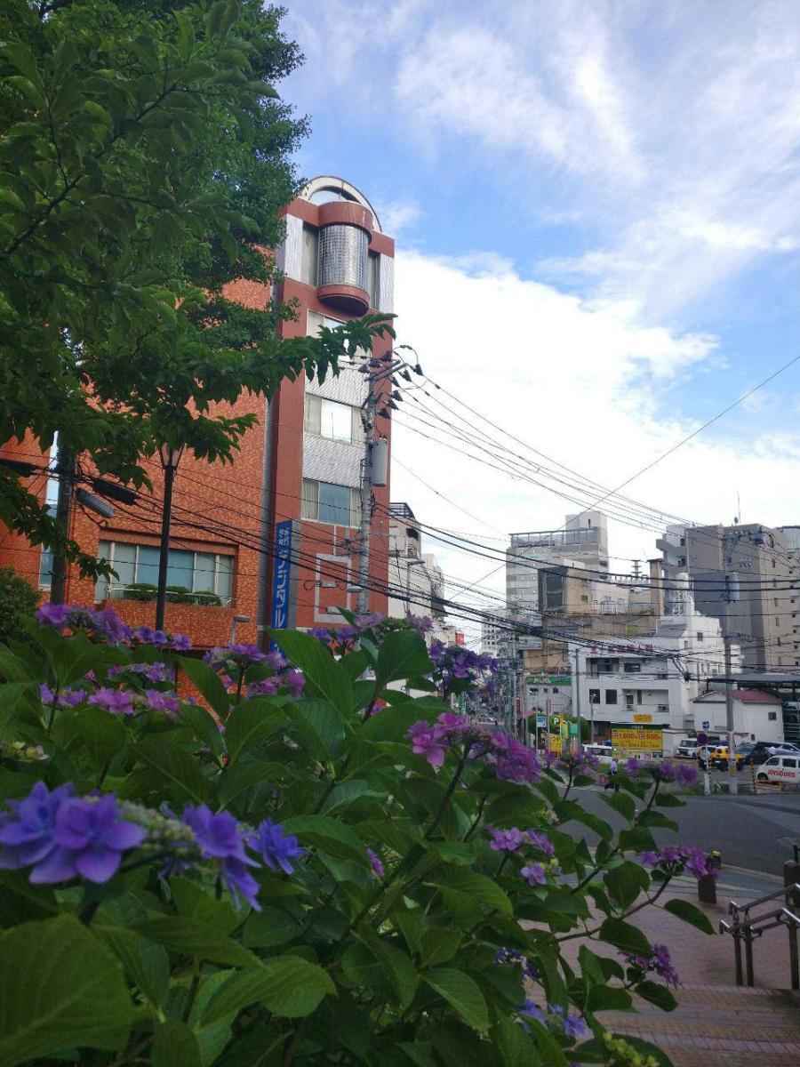 photo_2019-07-16_16-47-25