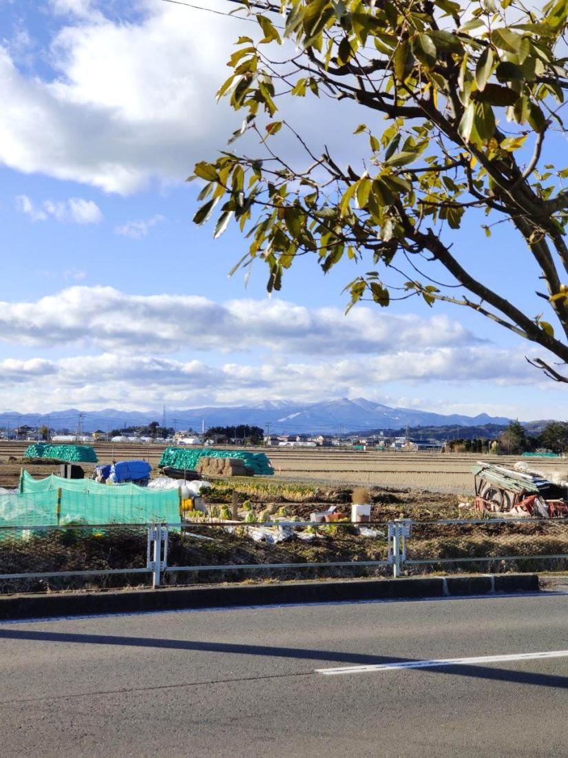 photo_2020-02-12_15-03-14