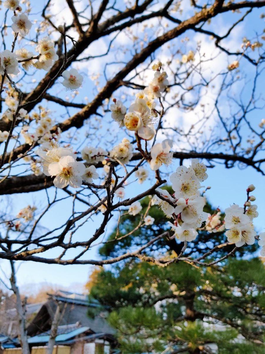 photo_2020-03-14_20-27-57