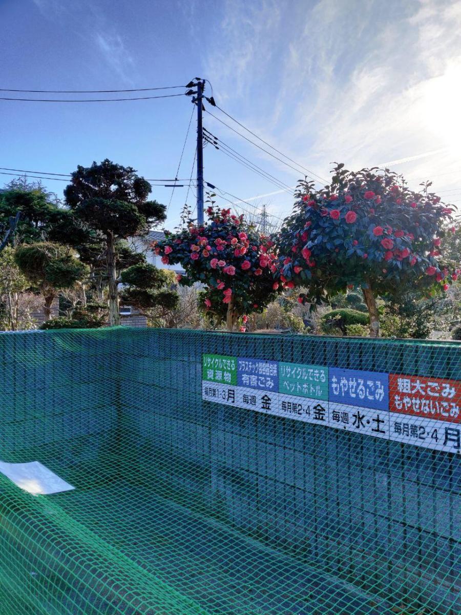 photo_2020-03-19_17-19-42