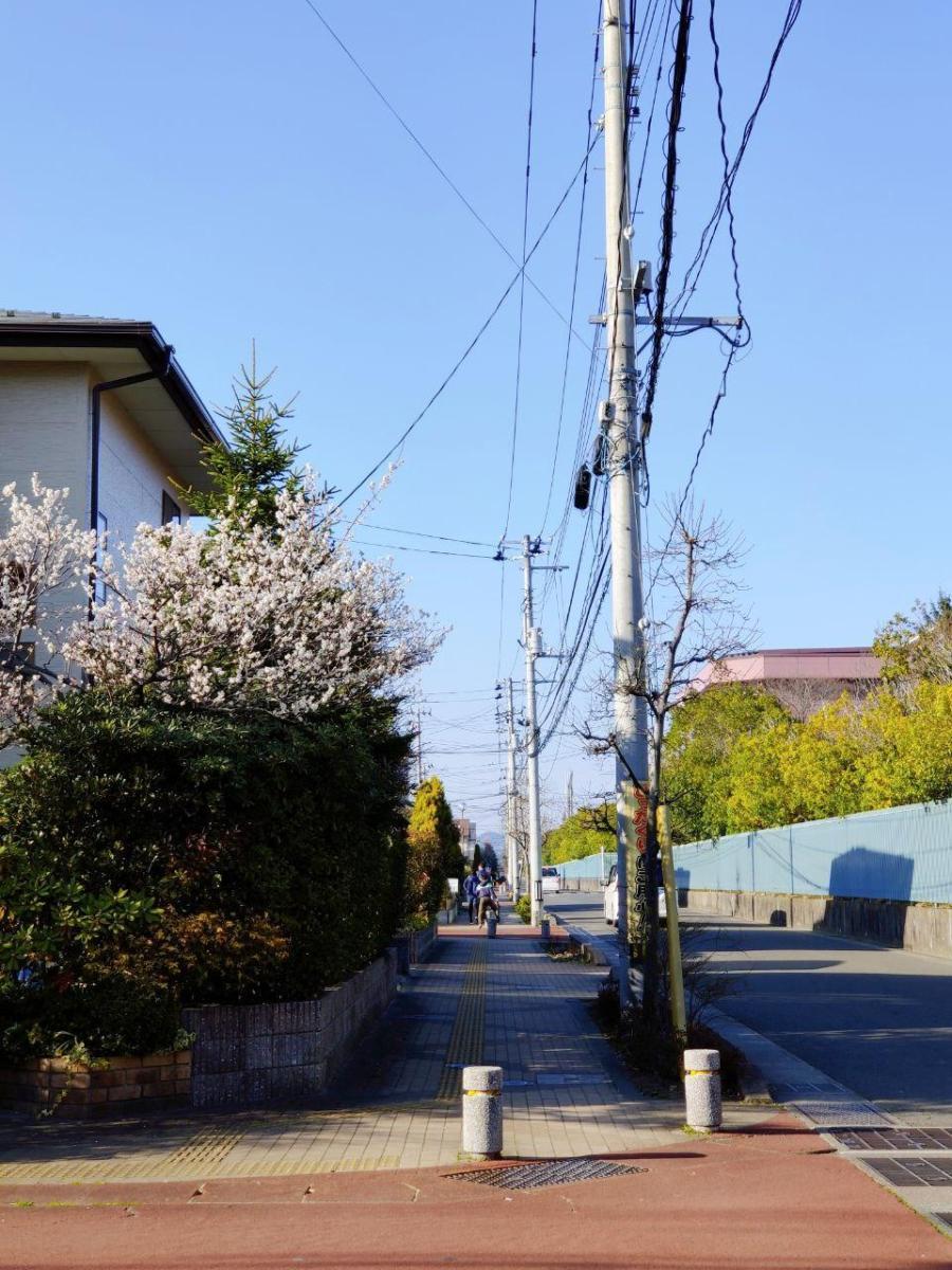 photo_2020-03-19_17-19-44