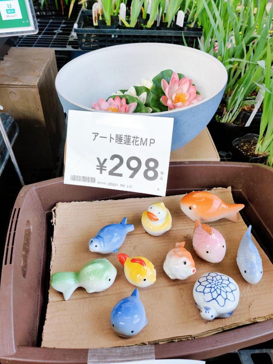 photo_2020-05-11_12-20-00 (2)
