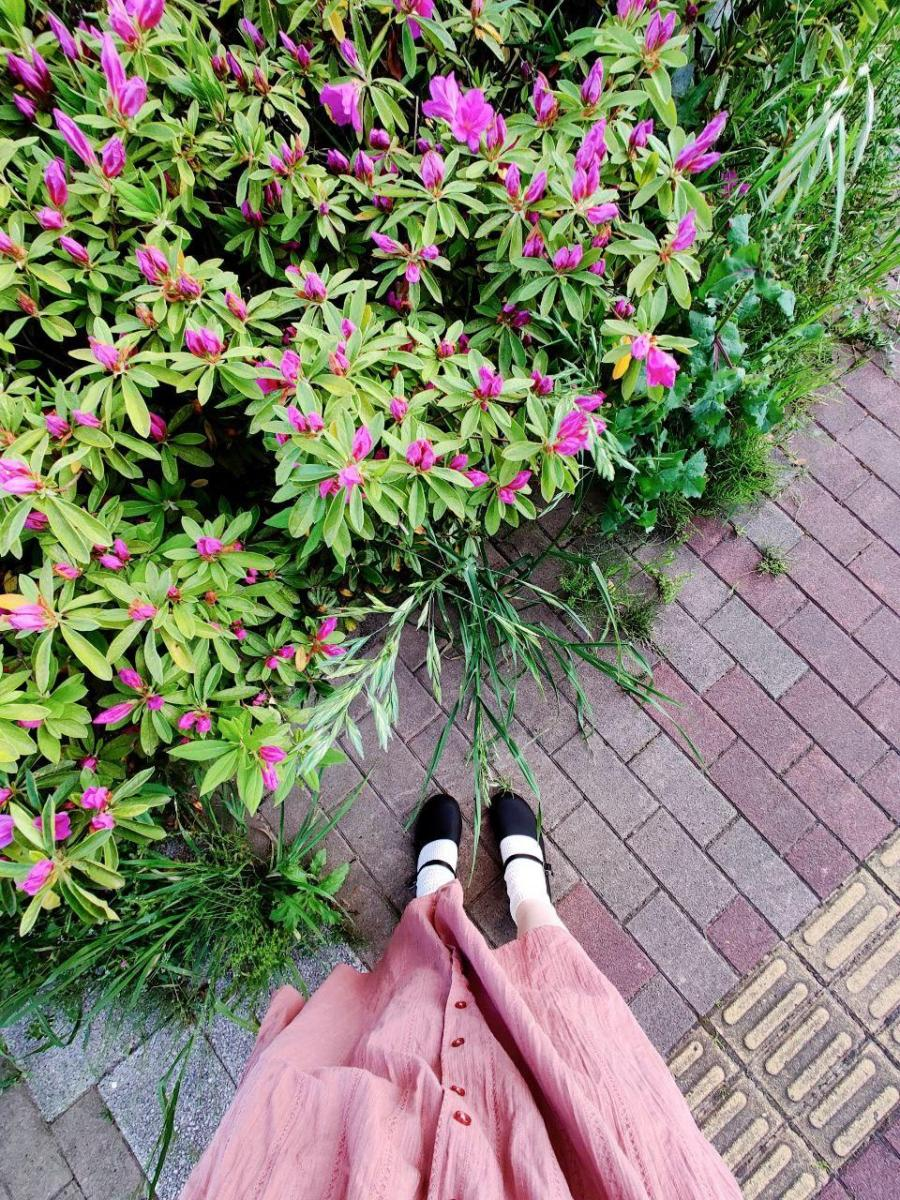 photo_2020-05-14_02-17-14