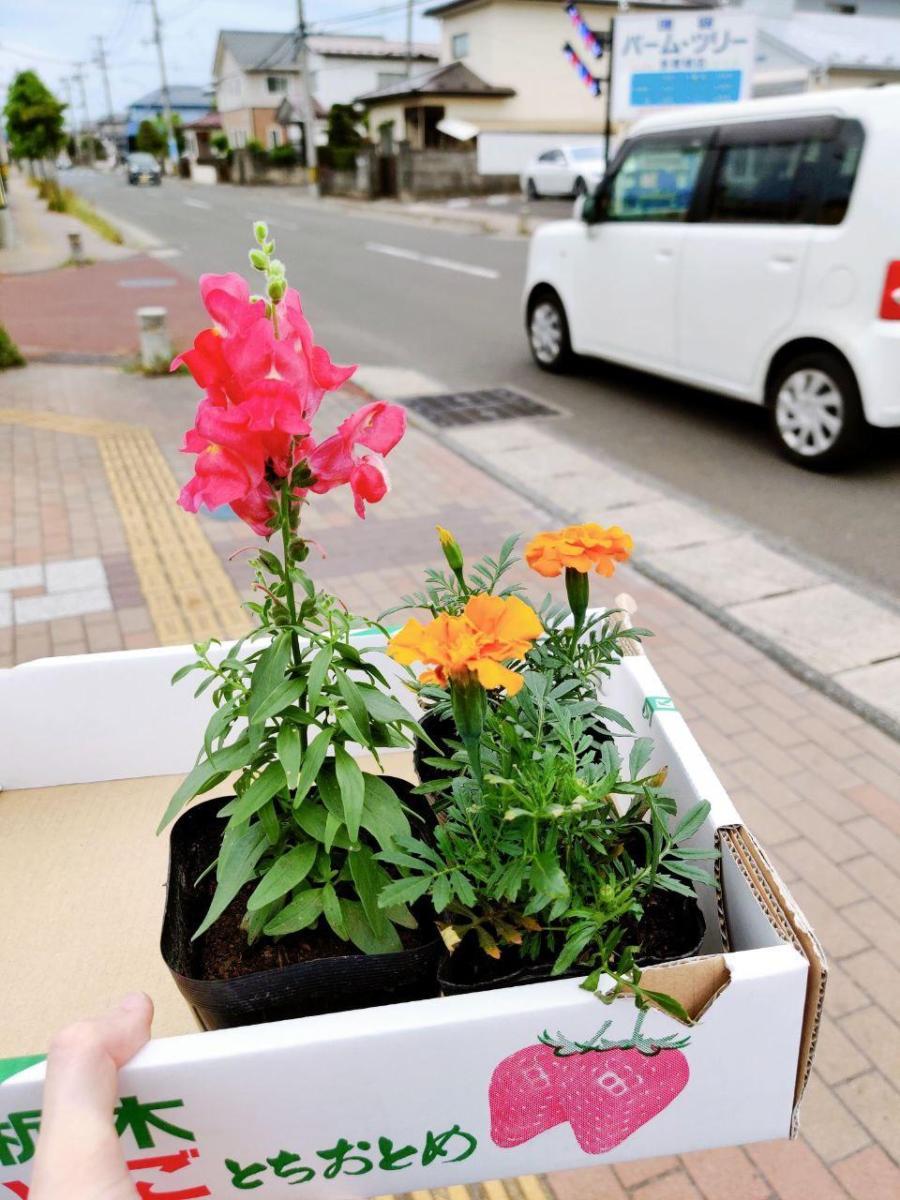 photo_2020-06-25_16-32-53